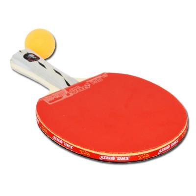 Хилка За Тенис на Маса DHS X-Series 3 Star