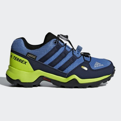 Adidas Terrex AX2R GTX K CM7704